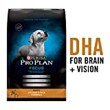 Purina Pro Plan Dry Puppy Food, FOCUS Chicken & Rice Formula - 6 lb. Bag